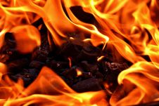Free Flame, Fire, Orange, Close Up Stock Image - 101012651