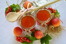 Free Fruit Preserve, Dish, Food, Condiment Royalty Free Stock Images - 101030369