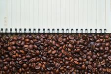 Free Commodity, Cocoa Bean Stock Images - 101031144