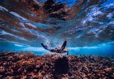 Free Sky, Water, Rock, Earth Stock Image - 101083061