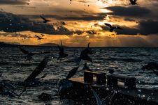 Free Sea, Sky, Horizon, Ocean Royalty Free Stock Photography - 101083697