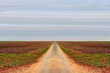Free Field, Sky, Road, Horizon Royalty Free Stock Photography - 101087577