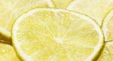 Free Lime, Citric Acid, Lemon Lime, Lemon Stock Images - 101088584