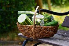 Free Basket, Flowerpot, Plant, Vegetable Stock Image - 101098351