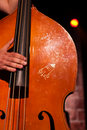 Free Classical Contrabass Playing Royalty Free Stock Photo - 10113115