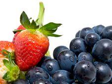 Free Fresh Fruit Royalty Free Stock Photography - 10111147
