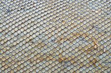 Free Rusty Lattice Royalty Free Stock Photos - 10111938