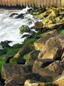 Free Rocky Coast Royalty Free Stock Images - 10113059