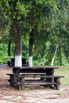 Free Tree, Bench And Table. Stock Photo - 10113930