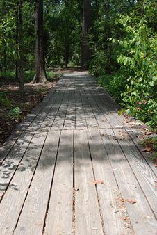Walkway In The Woods Stock Photo