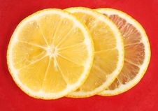Free Three Slice Of Orange Stock Photo - 10117700