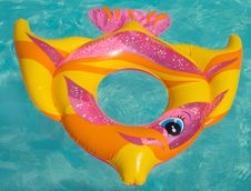 Free The Toy For Swimming Royalty Free Stock Photos - 10117718