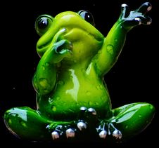 Free Ranidae, Green, Amphibian, Frog Royalty Free Stock Photo - 101101145