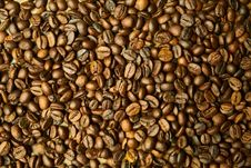 Free Commodity, Seed, Bean, Nuts & Seeds Royalty Free Stock Photos - 101149058