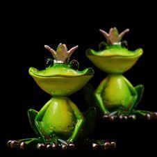 Free Ranidae, Frog, Tree Frog, Amphibian Royalty Free Stock Photo - 101155375