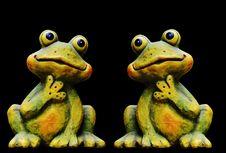 Free Ranidae, Amphibian, Frog, Toad Stock Photos - 101155383