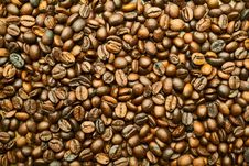 Free Jamaican Blue Mountain Coffee, Nuts & Seeds, Commodity, Seed Royalty Free Stock Photo - 101155395
