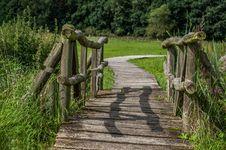 Free Path, Tree, Vegetation, Plant Royalty Free Stock Photos - 101156308