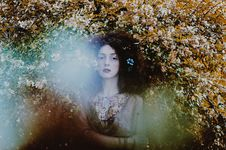 Free Nature, Beauty, Tree, Water Stock Image - 101176391