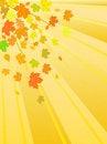Free Vector Autumn Leaves Stock Photo - 10124360