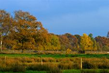 Free Landscape Of A Farmland With Colorful Autumn Trees Royalty Free Stock Photography - 10121227