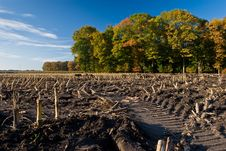 Landscape Of A Farmland With Colorful Autumn Trees Stock Photos