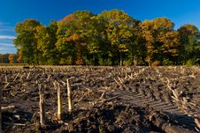Free Landscape Of A Farmland With Colorful Autumn Trees Stock Photos - 10121693