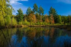 Free Landscape Of A Lake With Colorful Autumn Trees Royalty Free Stock Images - 10121789
