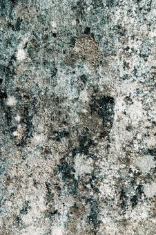 Free Grunge Texture Royalty Free Stock Images - 10121859