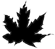 Free Maple Leaf Silhouette Stock Photos - 10122663