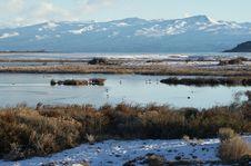 Free Lake In Winter Stock Photos - 10123823