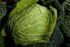 Free Green Cabbage Stock Image - 10124171
