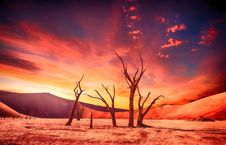 Free Sky, Red Sky At Morning, Afterglow, Horizon Royalty Free Stock Image - 101225466