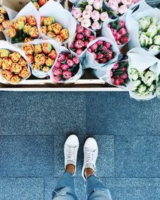 Free Shoe, Brunch, Food Stock Images - 101260424