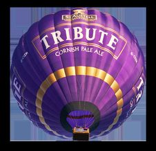 Free Hot Air Ballooning, Purple, Hot Air Balloon, Balloon Royalty Free Stock Photography - 101269687