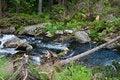 Free Tearing Flow Royalty Free Stock Image - 10130436