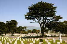 Free Military Cemetery Royalty Free Stock Photos - 10132438