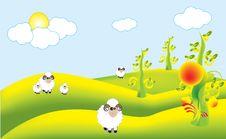 Free Colony Sheep Royalty Free Stock Photos - 10132538