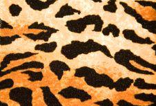 Free Leather Texture Stock Photos - 10133303