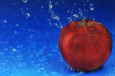 Free Red Apple Stock Image - 10136271