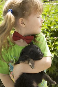 Free Girl With Puppy Stock Image - 10137691