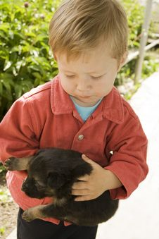 Free Boy With Puppy Royalty Free Stock Photography - 10137757