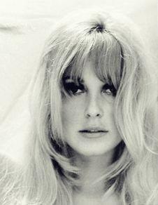 Free Sharon Tate,1966 Stock Photos - 101319763