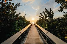 Free Backlit, Boardwalk, Clouds, Dawn Royalty Free Stock Photo - 101373105