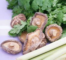 Free Asian Food Stock Photos - 10140353