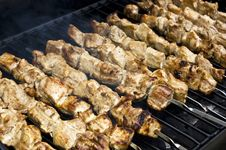 Free Shish Kabob Royalty Free Stock Images - 10140759