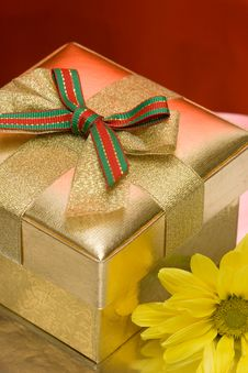 Free Gift Box Royalty Free Stock Images - 10142189