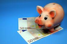 Free Money Stock Image - 10143441