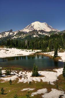 Free Mt Rainier Over Tipsoo Lake Stock Photo - 10143650