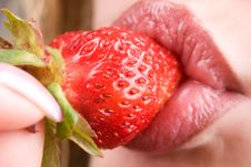Free Strawberry Stock Photos - 10146403